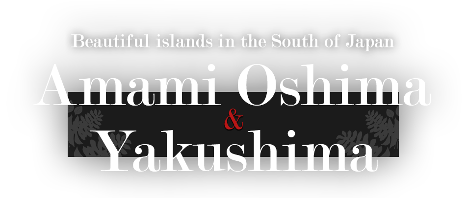 Beautiful islands in the South of Japan Amami Oshima & Yakushima(Japan Islands)