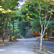 Old Kumano Road, World Heritage Site