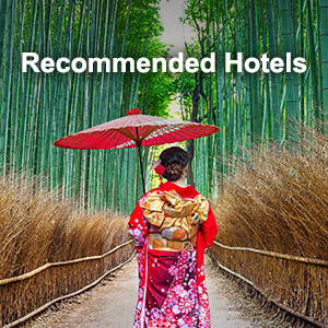 recomended hotels